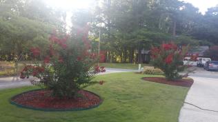 Milford Garden 3